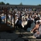 L\'Assessore Ilda Curti legge il saluto del Sindaco alla comunità torinese di religione musulmana