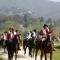 9 aprile, arrivano i Cavalieri della Sindone
