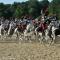 Il carosello storico del Reggimento a cavallo dei Carabinieri