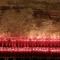 Le candele in memoria dei deportati nei lager nazisti