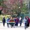 Gli alunni portano la Corona d'alloro