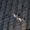 L'esibizione acrobatica di danza verticale